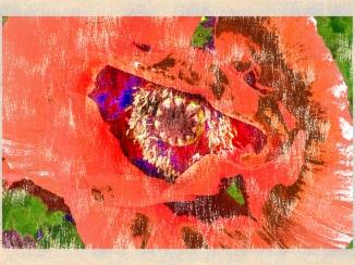 Painterly - 04