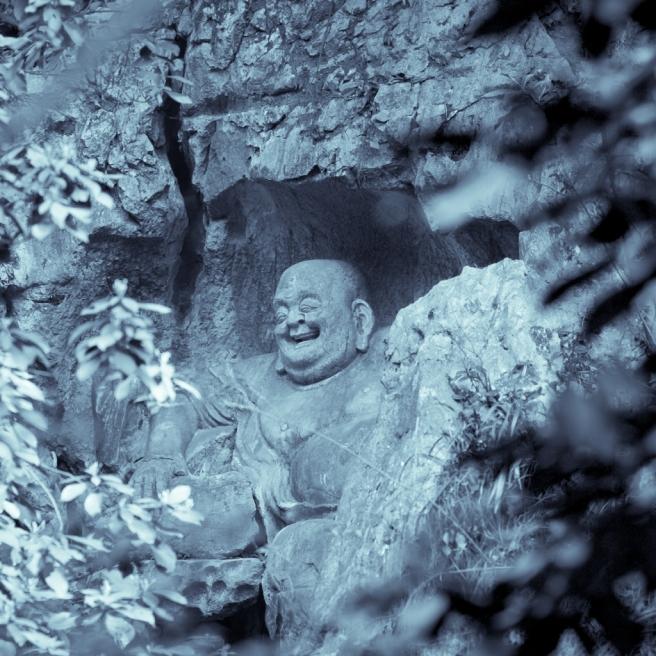 Fei Lai Feng - 03