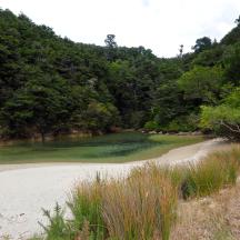 Abel Tasman Park - 14 of 16