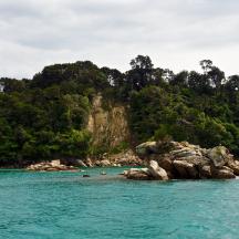 Abel Tasman Park - 16 of 16