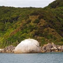 Abel Tasman Park - 9 of 16