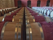 Barrels at Pontet Canet